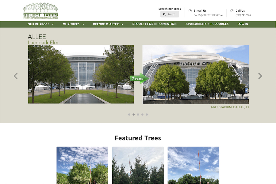 Homepage of Select Trees